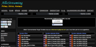 16 sites de streaming illicites bloqués pour 12 mois